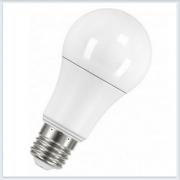 Светодиодная лампа Radium RL A100 12W 220-240V FR E27 240° 6000h - купить лампу