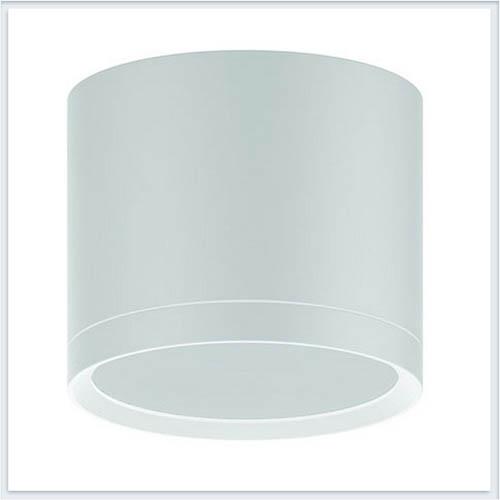 Светильник накладной с рассеивателем HD025 10W белый