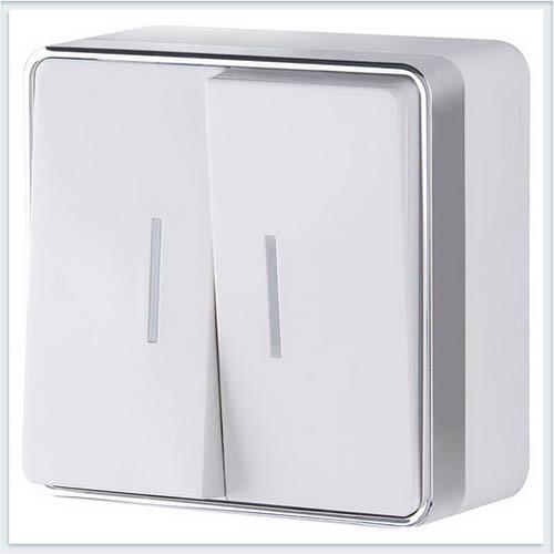 Выключатель двухклавишный с подсветкой белый